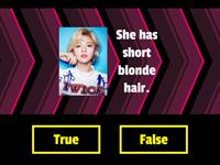 Lesson 8 - He has short straight hair (True or False Game)