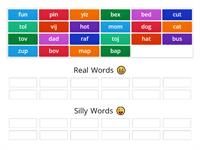 Real or Silly Words (CVC)