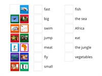 animals (1) - key word matching