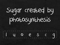 Photosynthesis Anagrams