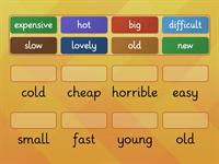 Useful Adjectives