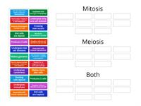 Compare and contrast mitosis and meiosis