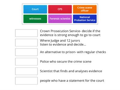 Word wall -Match-Up re Criminal Justice System