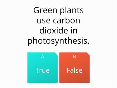 Carbon cycle quiz