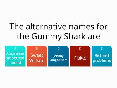 Quiz about sharks