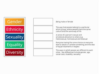 diversity and equality key terms match up