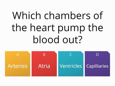 Heart intro quiz1