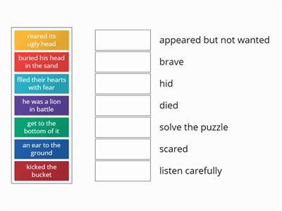 match the words Y6