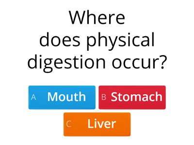 Quizdigestion