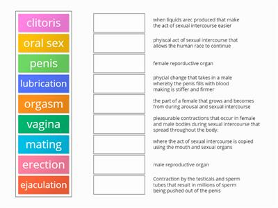 sexual intercouse matching key words