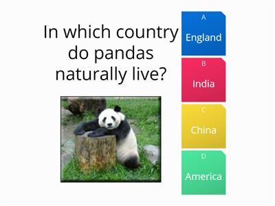 endangered species quiz