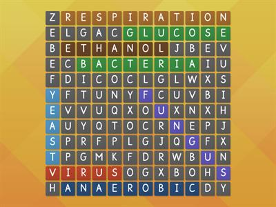 Wordsearch lesson 3