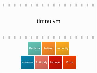 Immunity and Disease Anagrams
