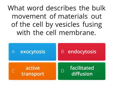 membrane transport quiz