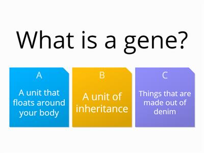 DNA and genes Quiz