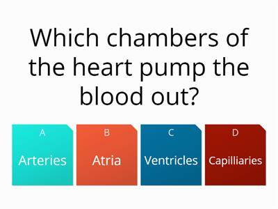 Heart Intro quiz