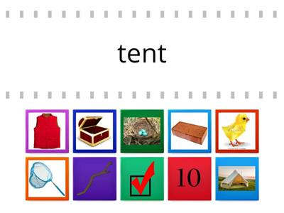blends and digraphs word picture match