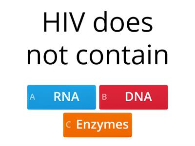 A2 Word wall quiz transcription translation HIV