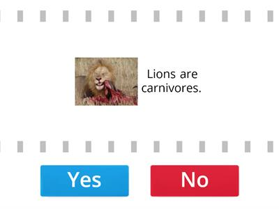 NEA 3 unit 7 Lions are carnivores.