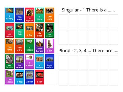 I wonder 3- starter- Singular and Plural Nouns