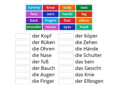 body parts German