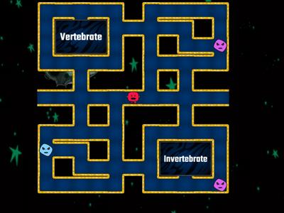 Vertebrates and Invertebrates Maze Chase