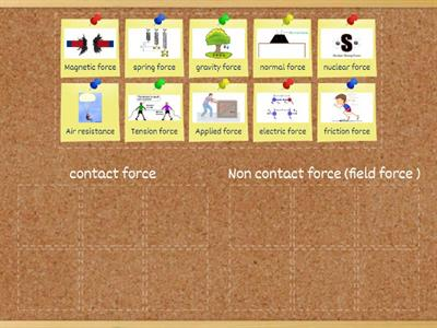 contact & field forces