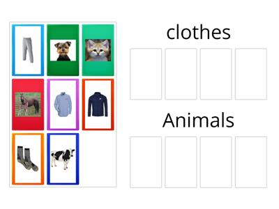 Sorting clothes and animals