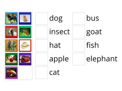 Show and tell 1.Units 1-3. Letters and phonics