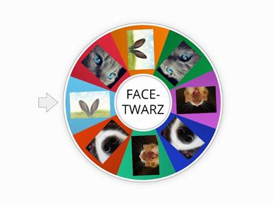 my face- random wheel