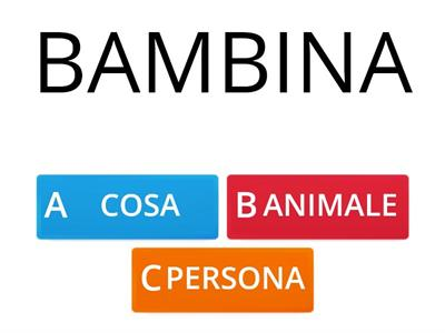 Copia di NOMI PERSONA ANIMALE O COSA