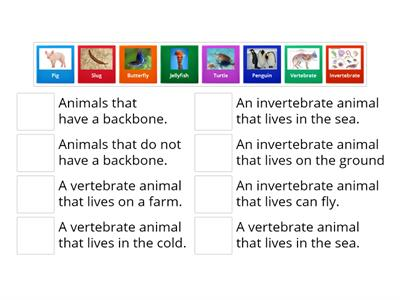 Invertebrates and Vertebrates Definition