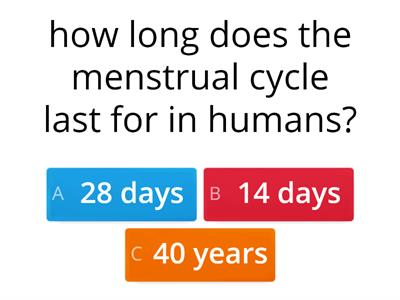 menstrual cycle quiz