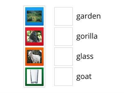 Phonics Gg- Match the pictures with the words that start with the Gg sound. Drag and drop.