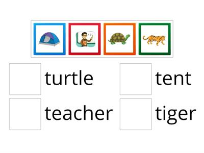 Oxford Phonics Letter Tt