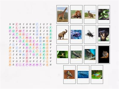 Klasa 4_Unit 7.1_Wild animals (wordsearch)