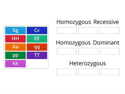 Genotype Review