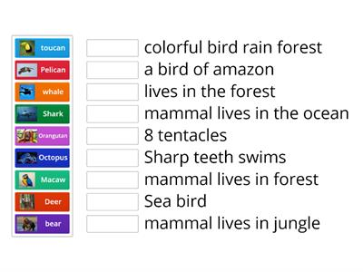 sort animals by  habitat or attributes