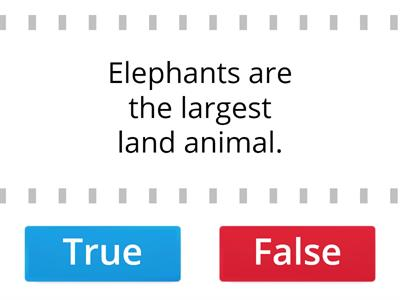 Fun facts about elephants.