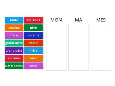 Adjectifs possessifs - membres de famille