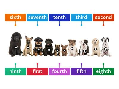 Ordinal Numbers 1st-10th