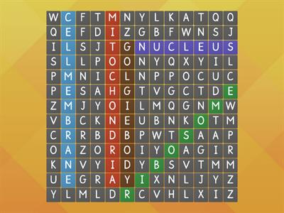 plant cell word search