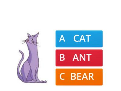 Sounds  cat, ant, rat, bat