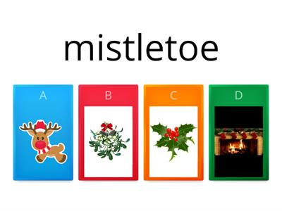 Copy of Christmas Vocabulary