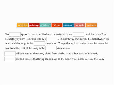 Yassein_Circulatory System