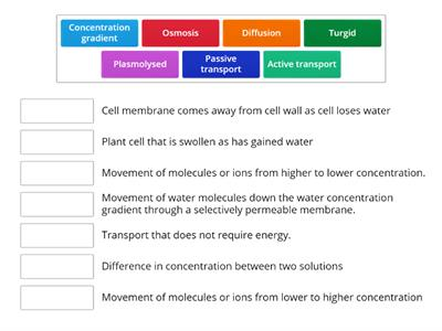 Cell transport (N5)