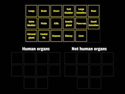 Human organs or not?