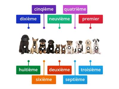 Ordinal numbers in French.