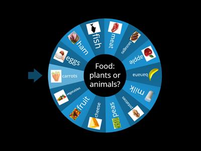 Food: plants or animals?
