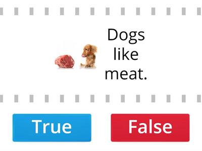 Animals and food - true or false?